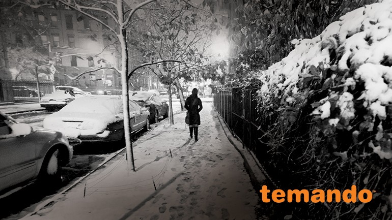 Holiday Hailstorm: 12 Ways to Survive Retail | Temando | Magento Blog