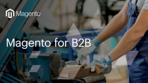 Magento Provides an Excellent eCommerce Solution for B2B