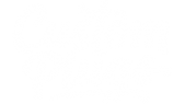 Custom Plugs logo