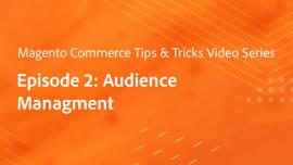Tips & Tricks Episode 2:  Profiling - Customer Audiences